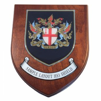 Presentation shield with medium shield shaped centrepiece and scroll.